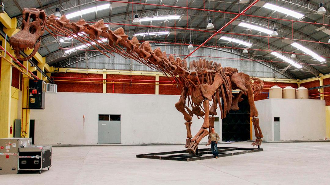 Esta nueva especie de titanosaurio fue la más grande de la Tierra