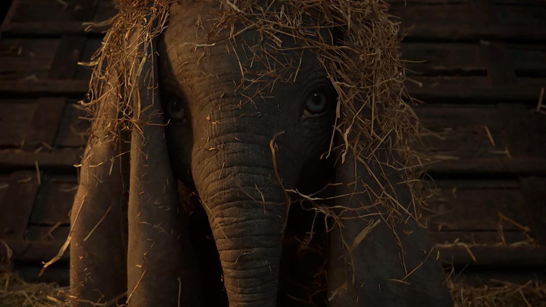 Dumbo-teaser-live-action