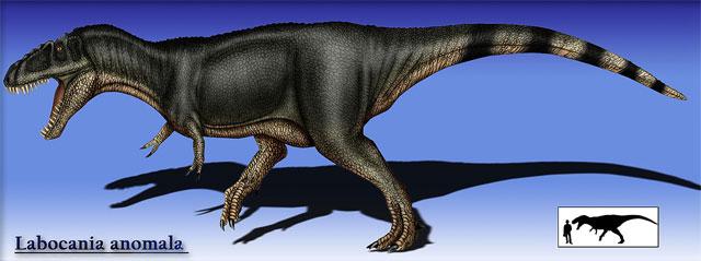 Los 8 Dinosaurios Mas Impresionantes Que Habitaron Mexico Codigo Espagueti El especialista en dinosaurios alan charig afirma que la pregunta que le formulan con mayor frecuencia a un paleontólogo es ¿por qué se extinguieron los dinosaurios?. los 8 dinosaurios mas impresionantes