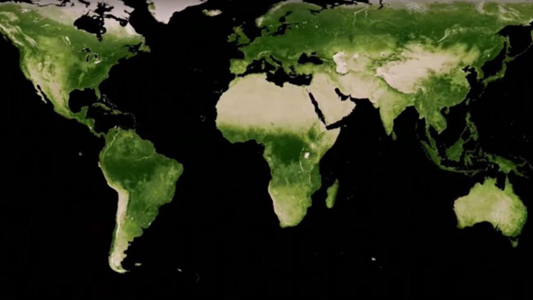 NASA, Tierra Verde, China, India