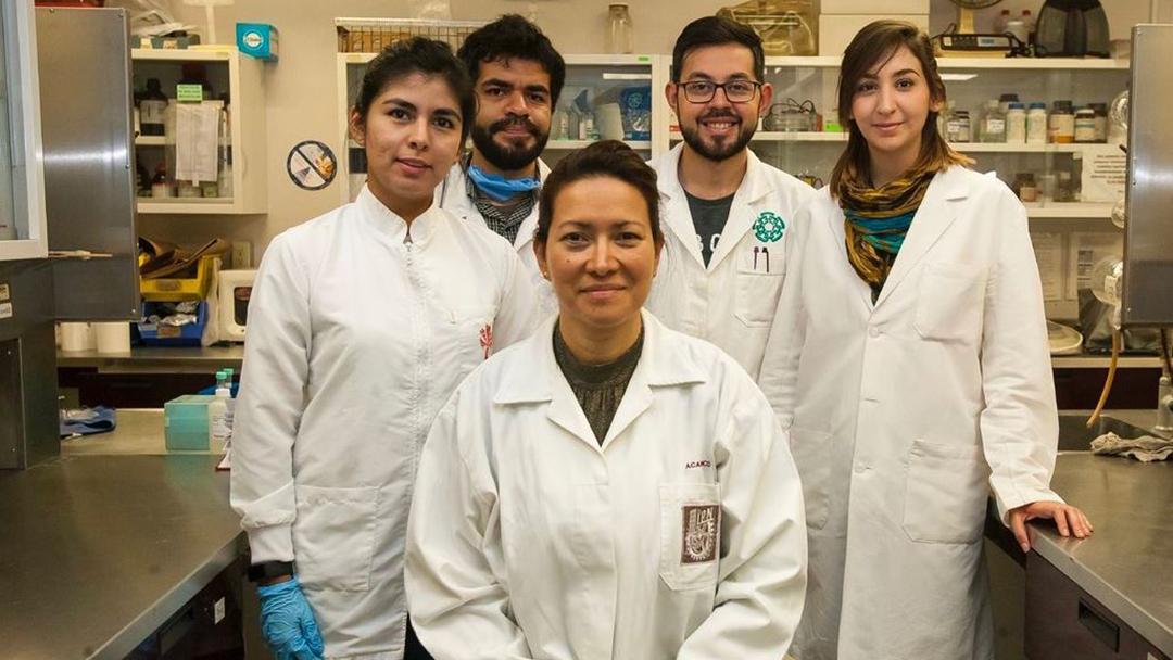 IPN elimina el Virus del Papiloma Humano