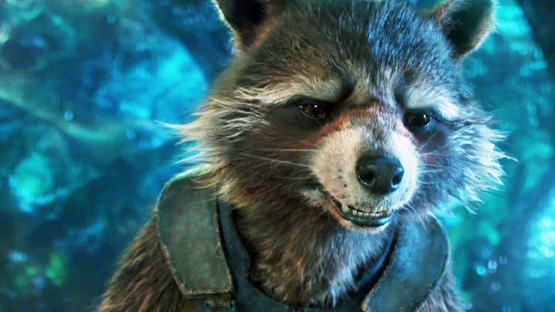 Guardians of the Galaxy Vol. 3, Rocket Racoon, James Gunn, MCU