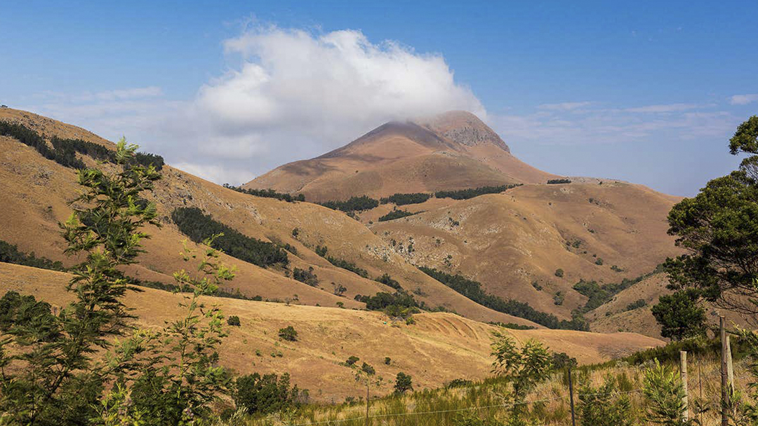 Materia, Orgánica, Extraterrestre, Sudáfrica