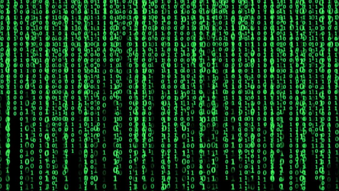 Matrix, Elon Musk, Nick Bostrom, Simulación