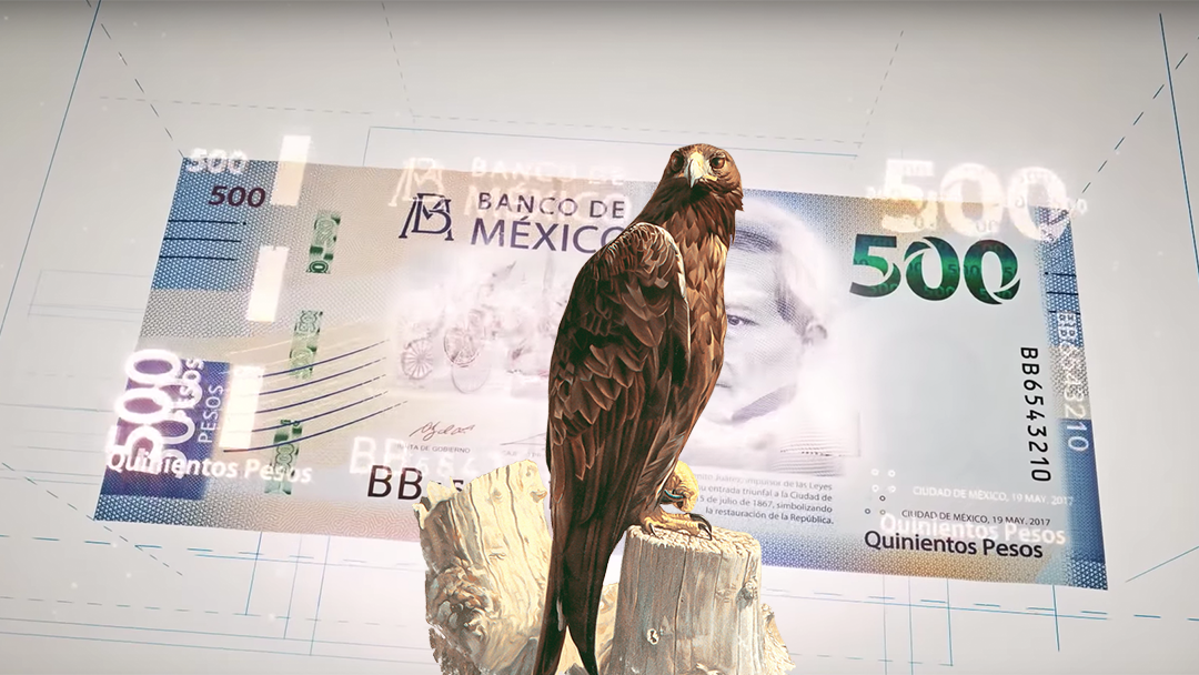 Un aguila en un billete mexicano