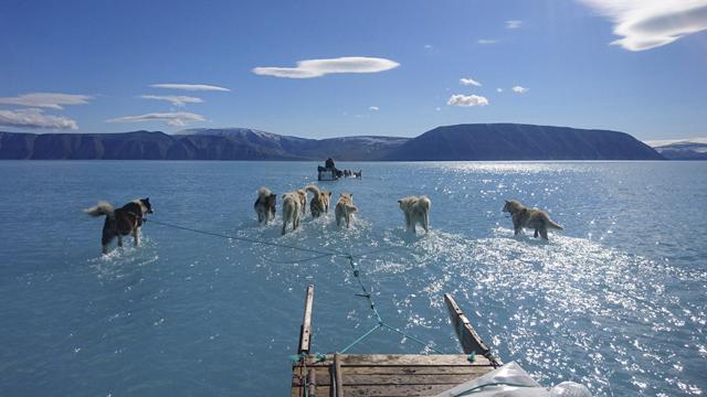 Groenlandia, Cambio Climático, Derretimiento, Polos
