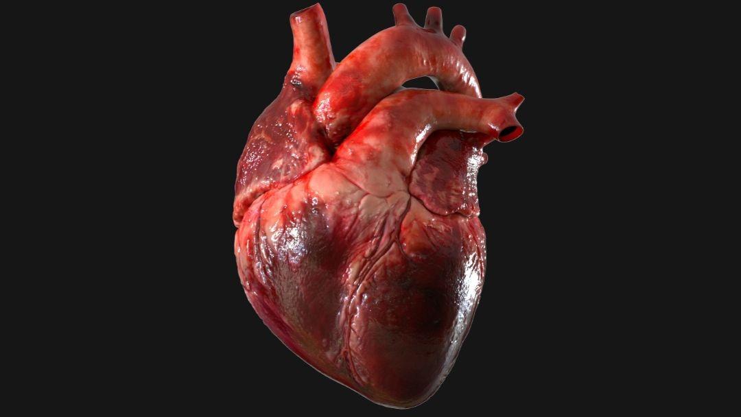 Reviven corazón humano que ya no latía