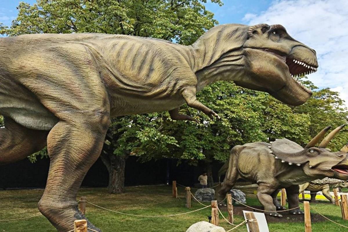 Subastan Dinosaurios Roboticos De Tamano Real Codigo Espagueti Si eres fan de el mundo jurásico y quieres ver dinosaurios de tamaño real no te pierdas robotic dinosaurs en la carpa astros, te contamos qué hay. subastan dinosaurios roboticos de
