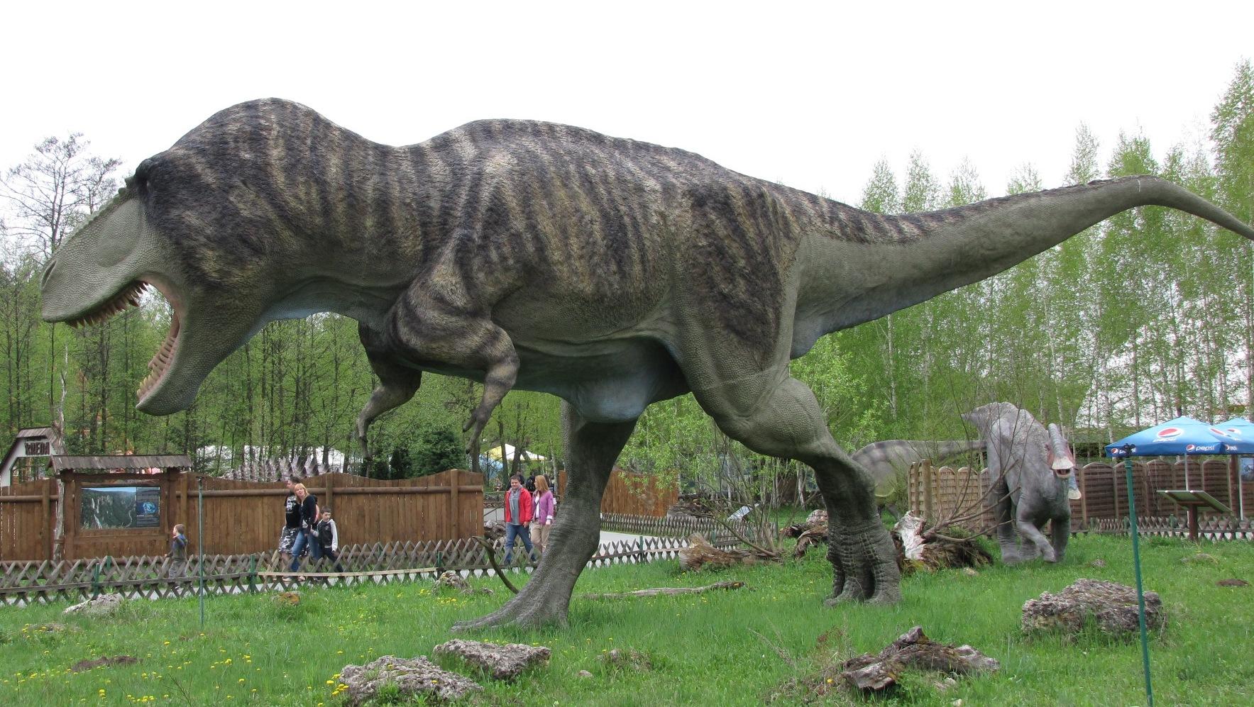 El tiranousario rex ejemplica dos principios de la evolución.